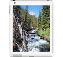 River iPad Case/Skin
