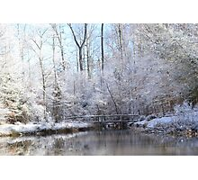 snow covered walk bridge Photographic Print