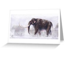 Mammuthus Primigenius Finished Greeting Card