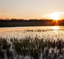 DeSoto Sunset by Jean Martin