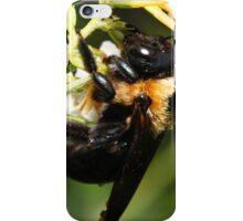 I am SOOOO Drunk on Honey Meade!  iPhone Case/Skin