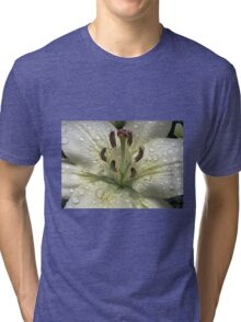 Immaculate - Lily With Raindrops Tri-blend T-Shirt