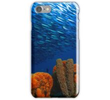 sea sponge and fish iPhone Case/Skin