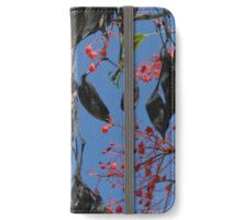 Flame Tree iPhone Wallet/Case/Skin
