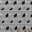 Wall Pattern by Ethna Gillespie