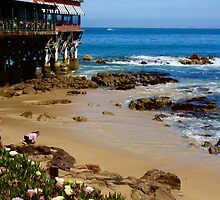 On Cannery Row by Barbara  Brown
