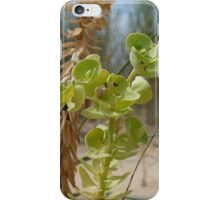 Dunes: Phillip Island, Australia iPhone Case/Skin