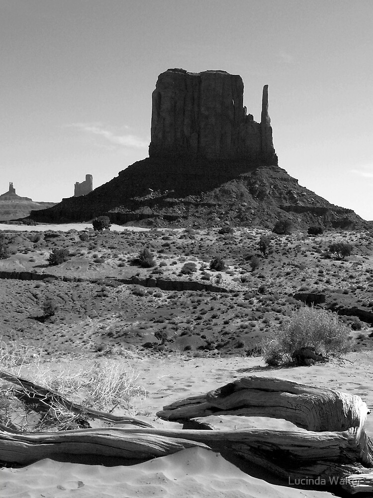 Mittens in Monument Valley ~ Black & White by Lucinda Walter