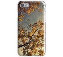 A Day in Autumn iPhone Case/Skin