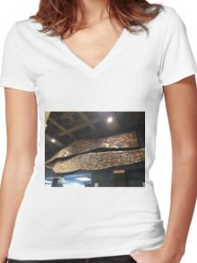 Wall of Books Women's Fitted V-Neck T-Shirt