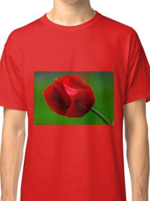 Close up of bud of a red Anemone coronaria (Poppy Anemone)  Classic T-Shirt