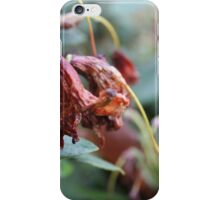 Dying Flower iPhone Case/Skin
