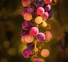 Grape jewels by Celeste Mookherjee