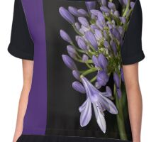 flower- agapanthus-blue-buds-one-flower Chiffon Top
