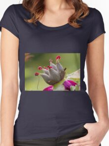 dried peony in the gardendried peony in the garden Women's Fitted Scoop T-Shirt