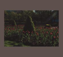 Downtown Victorian Garden - Red Tulips and Sunshine Baby Tee