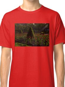 Downtown Victorian Garden - Red Tulips and Sunshine Classic T-Shirt