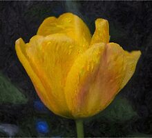 Yellow Tulip Oil Painting Effect by Glen Allen