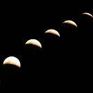 Eclipse by Jenny Brice