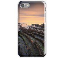 Hidden Dragon Tails iPhone Case/Skin