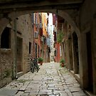 Old alley by annalisa bianchetti