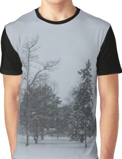 A Cold December Morning - Snowstorm in the Park Graphic T-Shirt