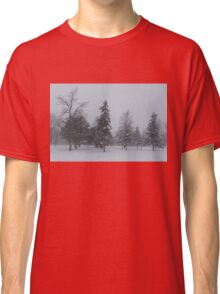A Cold December Morning - Snowstorm in the Park Classic T-Shirt