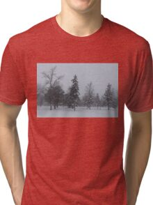 A Cold December Morning - Snowstorm in the Park Tri-blend T-Shirt