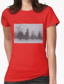 A Cold December Morning - Snowstorm in the Park Womens Fitted T-Shirt