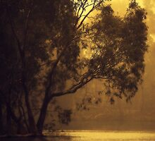 Golden Morning By Lorraine McCarthy by Lozzar Landscape