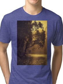 Golden Morning By Lorraine McCarthy Tri-blend T-Shirt