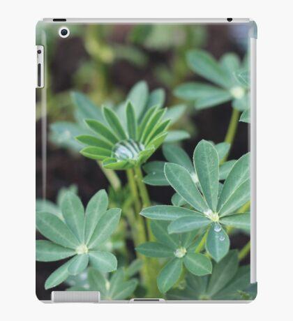 Raindrops  iPad Case/Skin