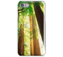 Northern California,Humboldt County And Redwood Trees iPhone Case/Skin