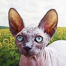 Cat In Sunflowers by Phil Perkins