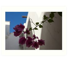 Contemplating Mediterranean Vacations - Whitewashed Walls and Bougainvilleas Art Print
