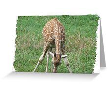 I am Too Tall Greeting Card