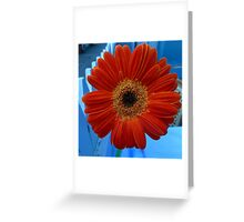 US - California - Saratoga - picket fence and flower Greeting Card