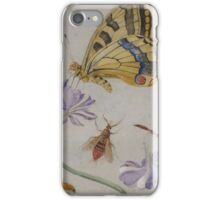 Insects and garden pansy, . Jan van Kessel the Elder 4 iPhone Case/Skin