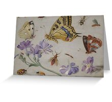 Insects and garden pansy, . Jan van Kessel the Elder 4 Greeting Card