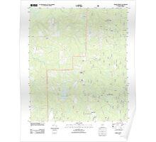 USGS TOPO Map Alabama AL Parker Springs 20110926 TM Poster