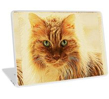 Marmalade Cat With Curvy Whiskers Laptop Skin