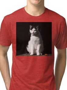 Black and White Cat Sitting Tri-blend T-Shirt
