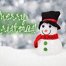 Merry Xmas - Snowman 04 by garigots