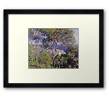 Claude Monet - Bordighera 1884  Impressionism . Famous paintings Framed Print