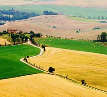 Tuscany summer by MIRCEA COSTINA
