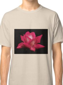 A Solitary Rose Classic T-Shirt