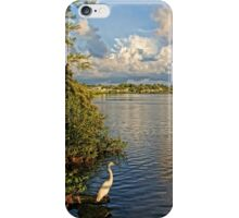 Morning Walk  iPhone Case/Skin
