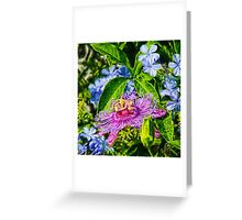 Passion Flower And Plumbago  Greeting Card