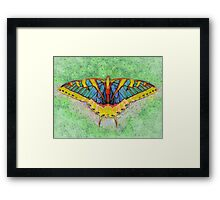 Butterfly Counts Moments Framed Print