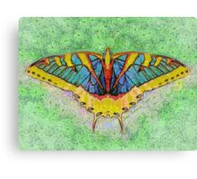 Butterfly Counts Moments Canvas Print